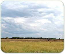 Геодезичні роботи з інвентаризації та встановлення меж земельних ділянок